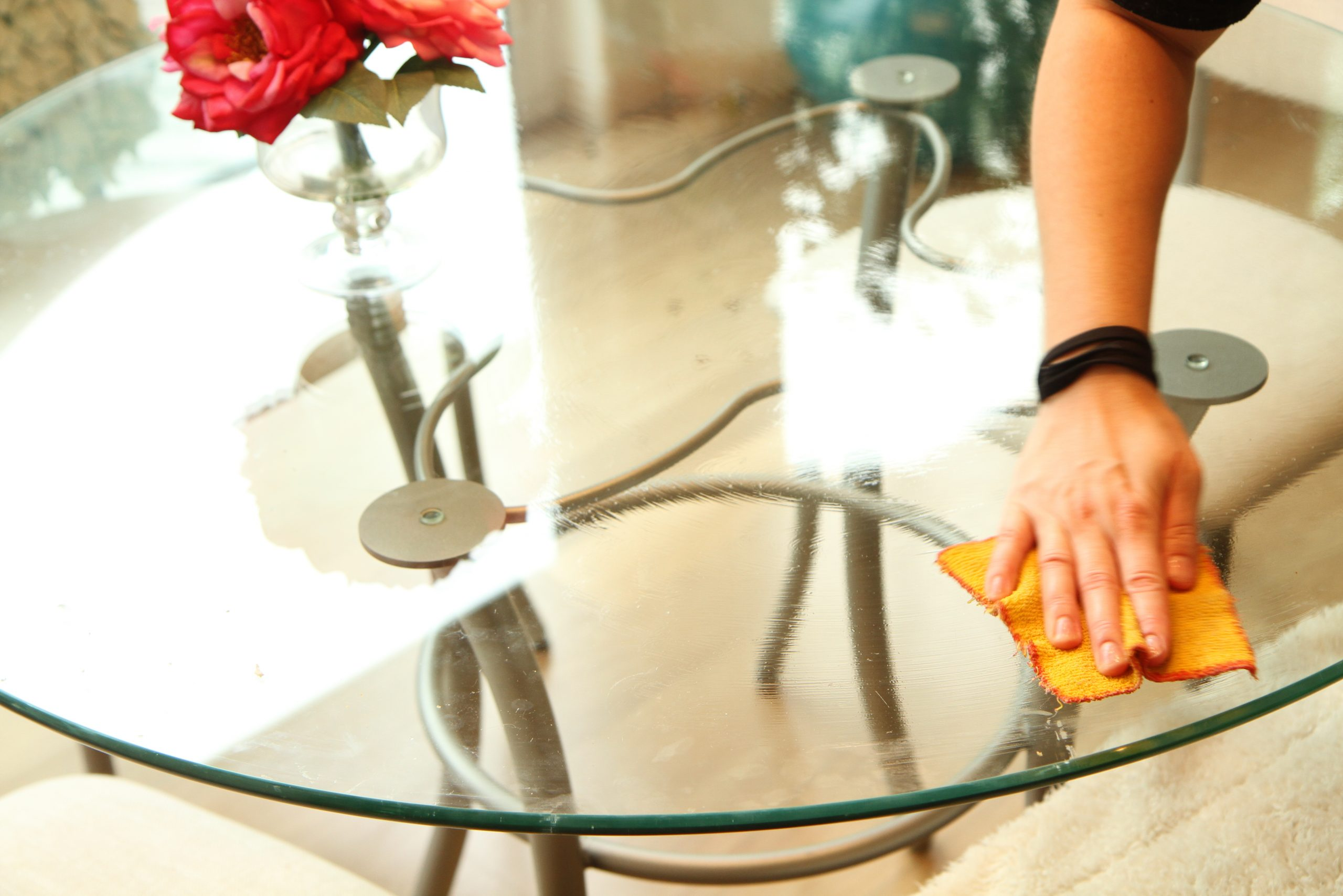 Home Cleaners Minneapolis Minnesota